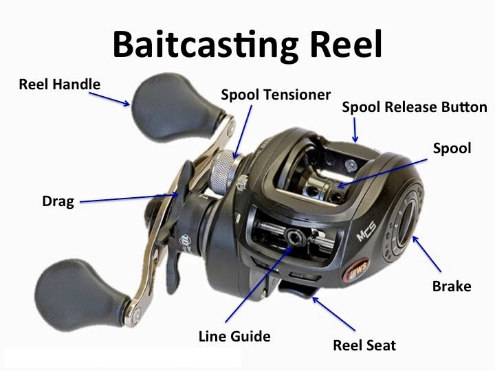 fishing pole and reel diagram how to choose between different types of    fishing    reels  how to choose between different types of    fishing    reels