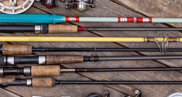 The best fishing rods for Best fishing rods