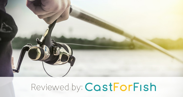 Best Saltwater Spinning Reel For The Money