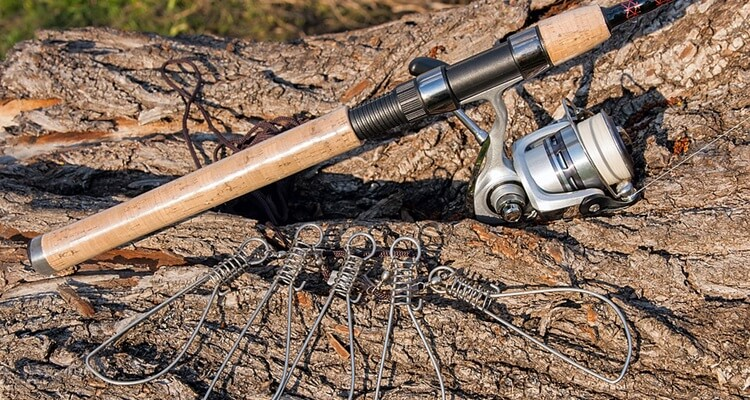Finding The Best Bass Fishing Rods for Your Budget