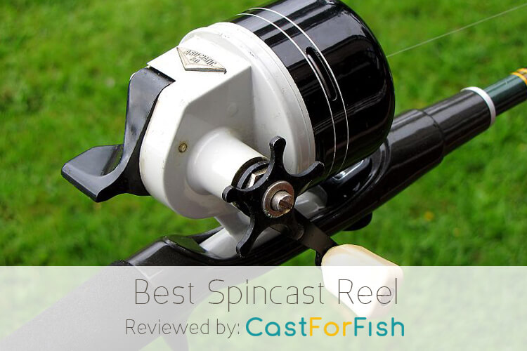 Best Spincast Reel on the Market