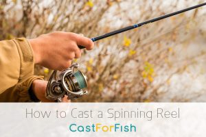 How to Cast a Spinning Reel