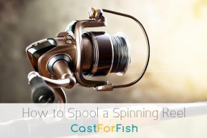 How to Spool a Spinning Reel